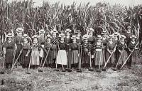 Japanese women sugar cane workers